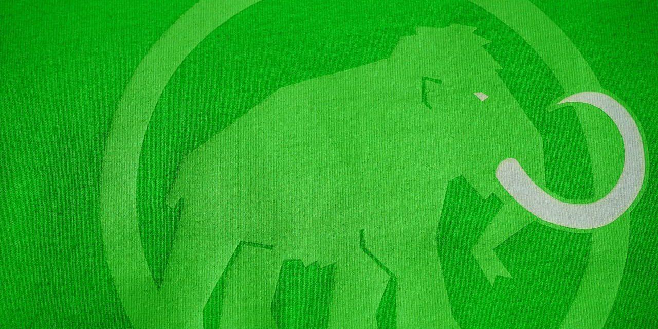 Metody druku na tkaninie – przegląd najpopularniejszych metod